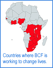 Countires where BCF are active in Africa